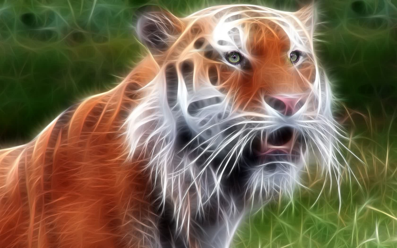 Black tigers best download 2 - Best animal wallpaper download ...